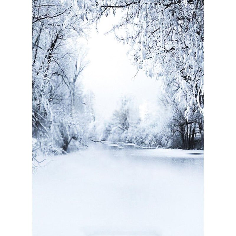Winter Snow Scene Thin Xmas Backdrop