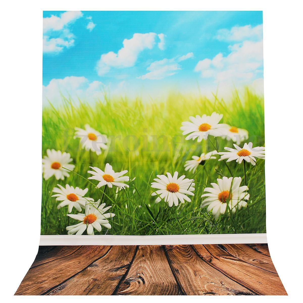 Daisy Spring Backdrop Silk Poster