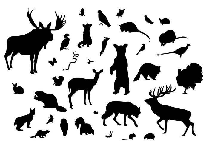 Mix of wild animals sugar silhouette cut out