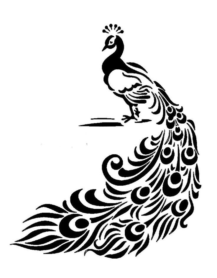 Peacock stencil cake decorating