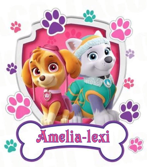 sky & Friend with name Paw Petrol Cake topper