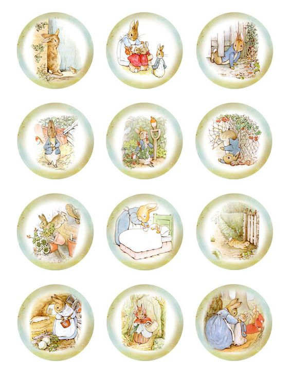 Peter Rabbet Cupcake Toppers X 12