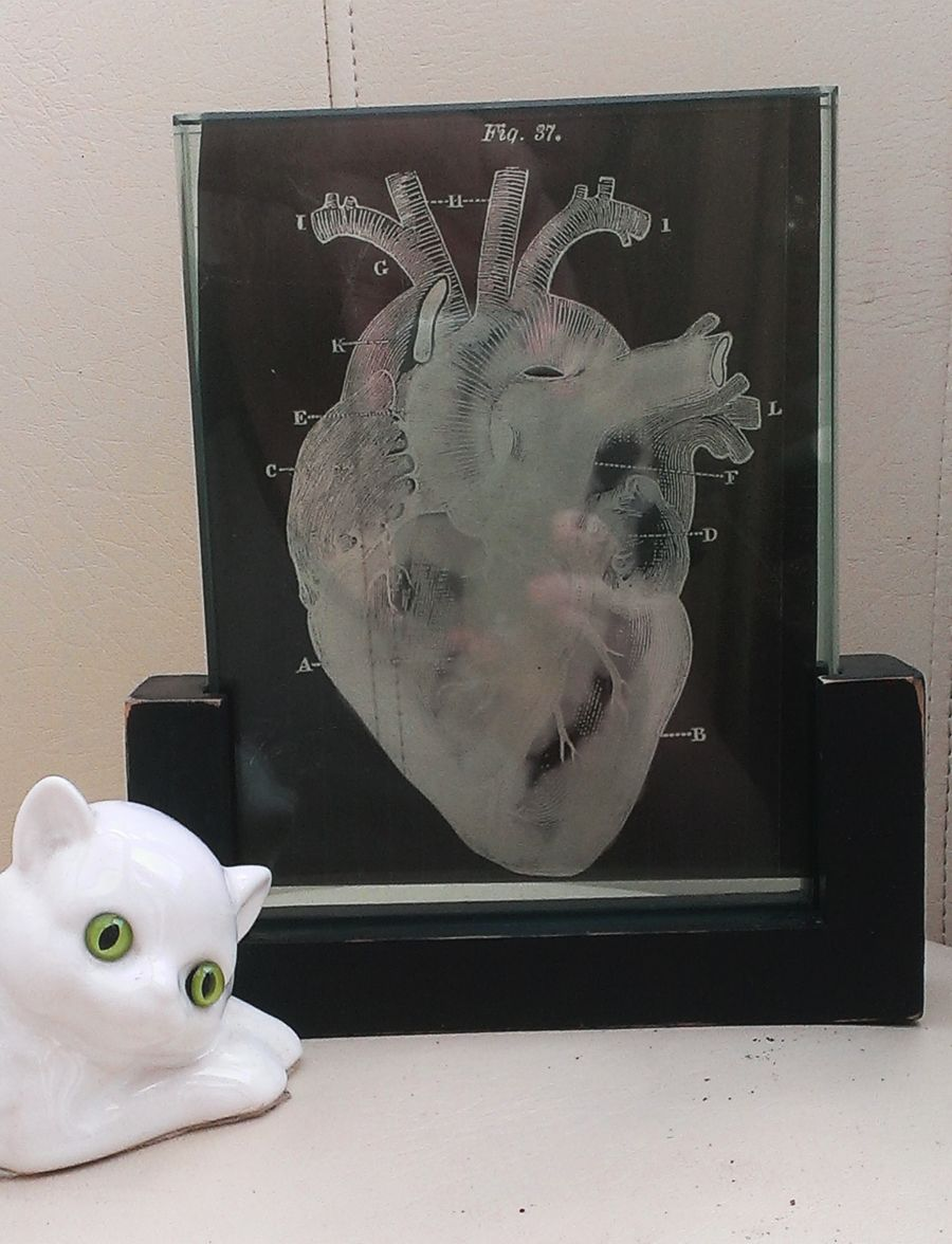 Valentines macabre gothic xray heart double glass frameless picture frame size a5 created by sami r hall art