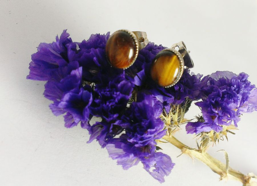 Tiger Eye Beveled Studs Earrings