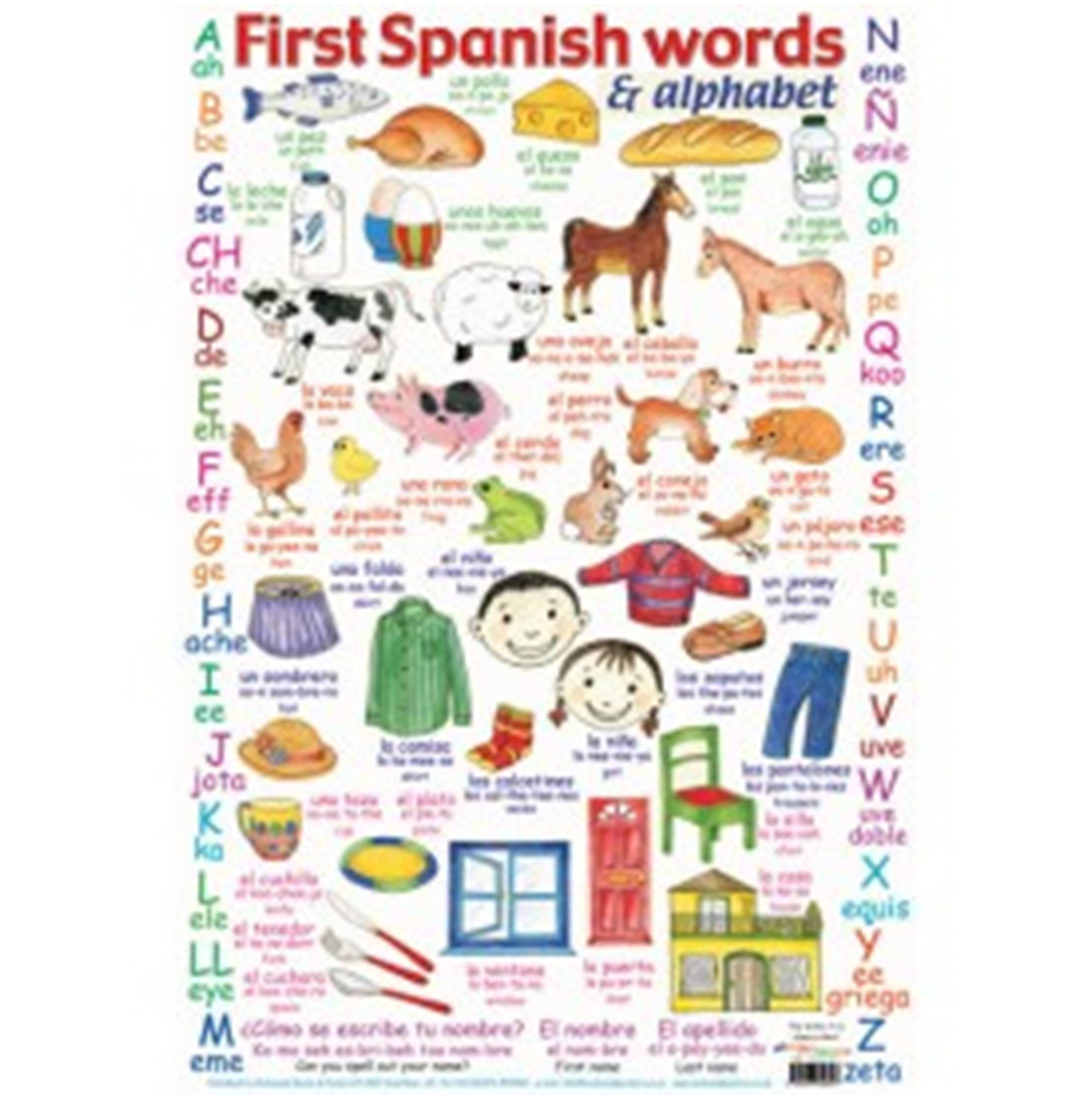 Spanish Words And Alphabet Poster