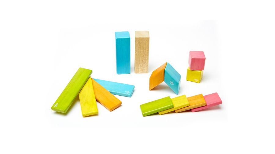 14 Piece Tints Tegu Set