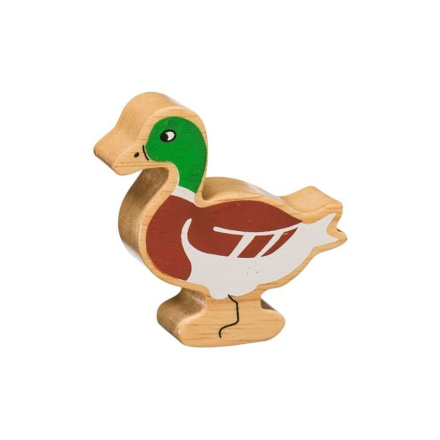 Lanka Kade Green Brown Mallard Duck