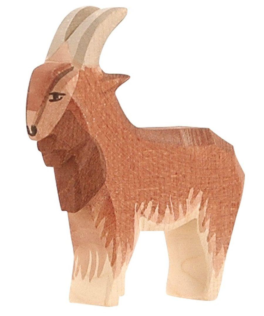 Ostheimer Goat Male (Billy Goat)