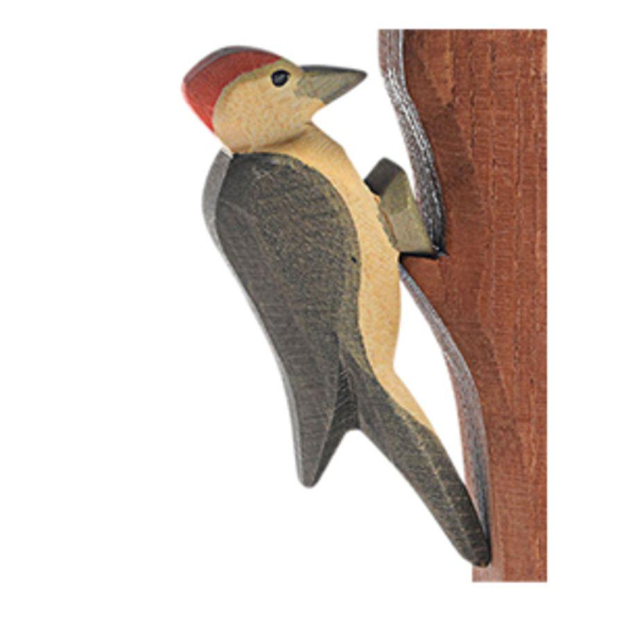 Ostheimer Woodpecker