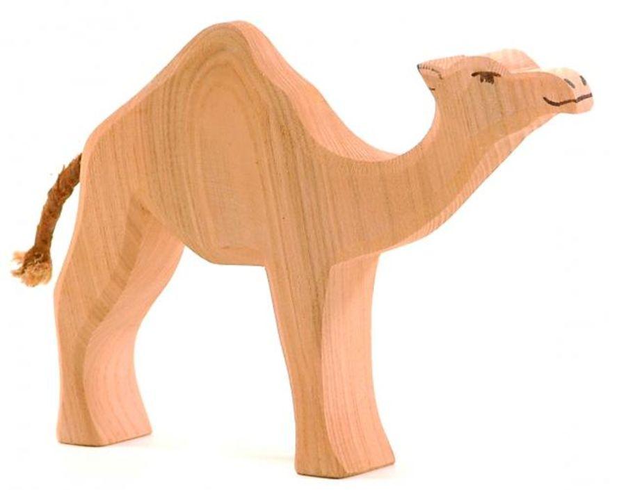 Ostheimer Dromedary Camel