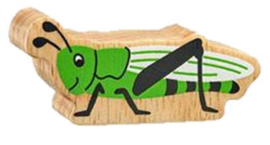 Lanka Kade Green Grasshopper