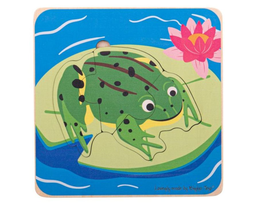 Bigjigs Lifecycle Layer Puzzle - Frog