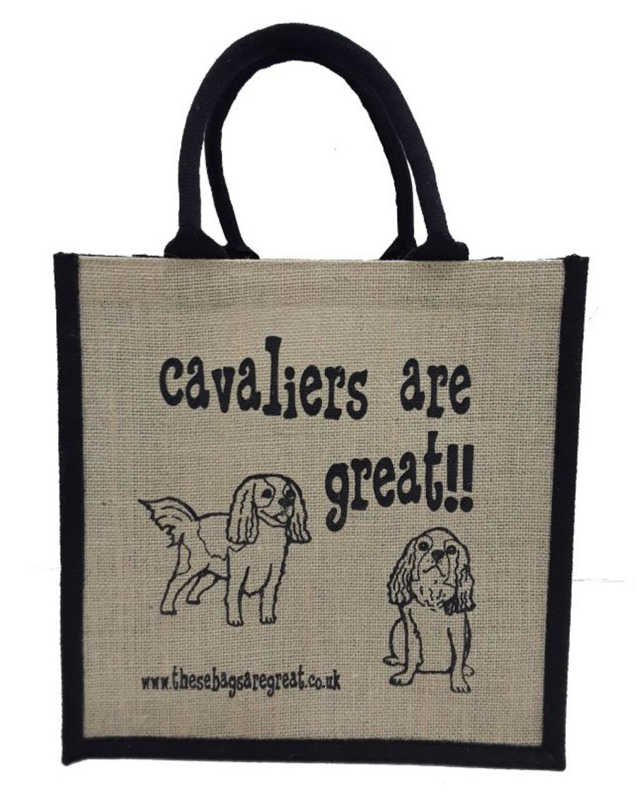 Cavaliers are Great Bag
