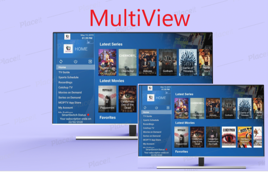 12 Months multiview hosting pass