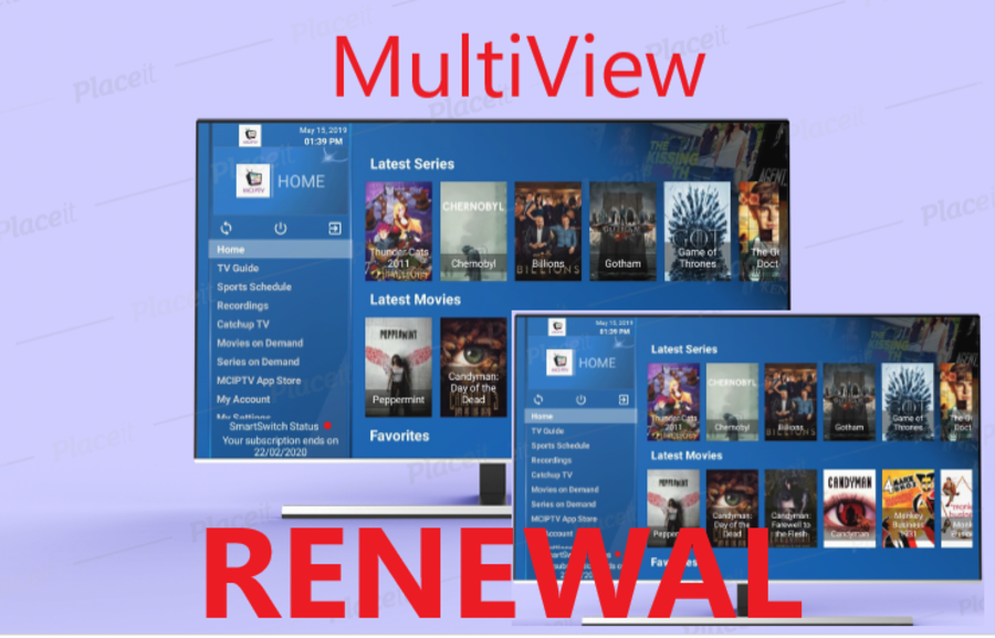 VFM Multiview RENEWAL