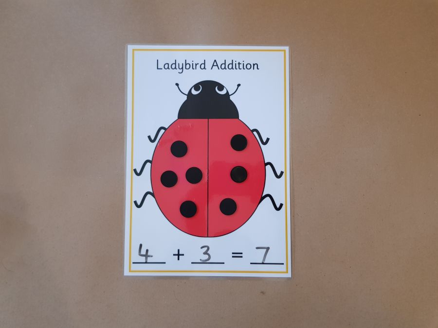 Ladybird Addition Activity