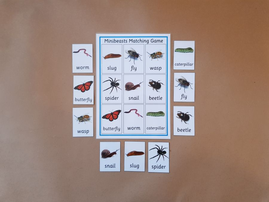 Minibeasts matching game