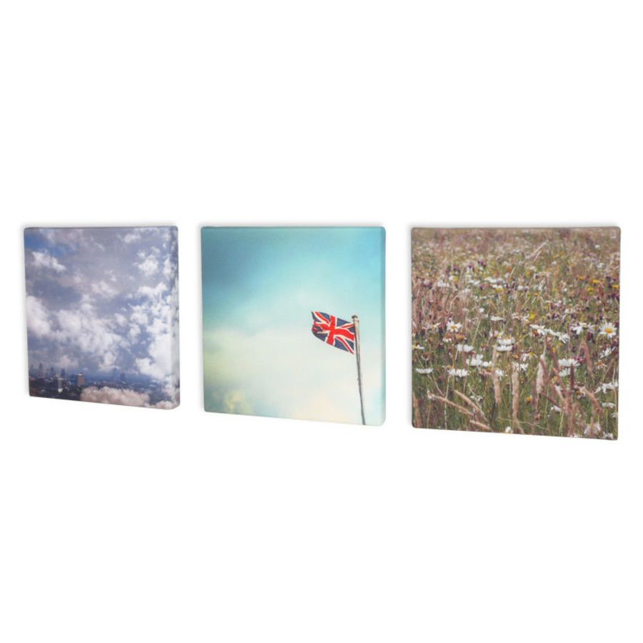 Canvas Print 25 x 30 cm