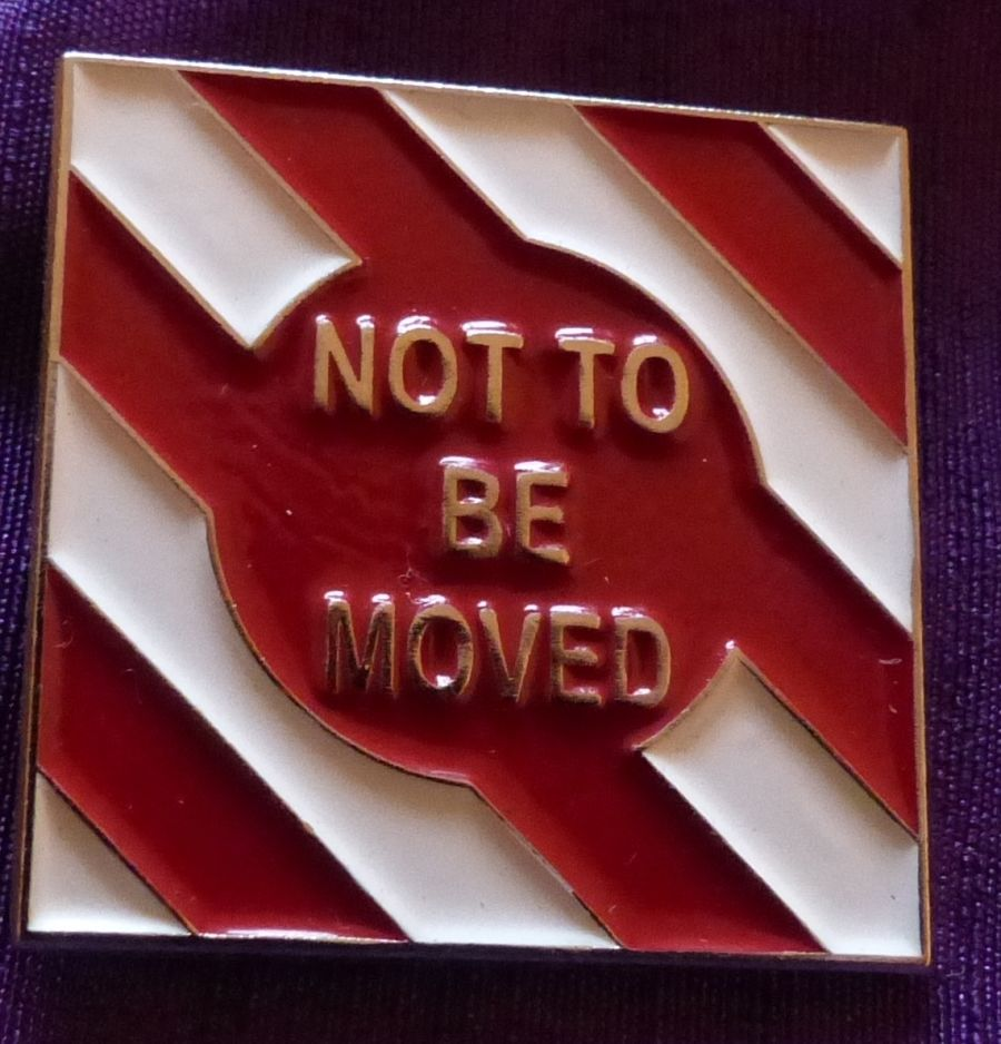 Not to be Moved Pin
