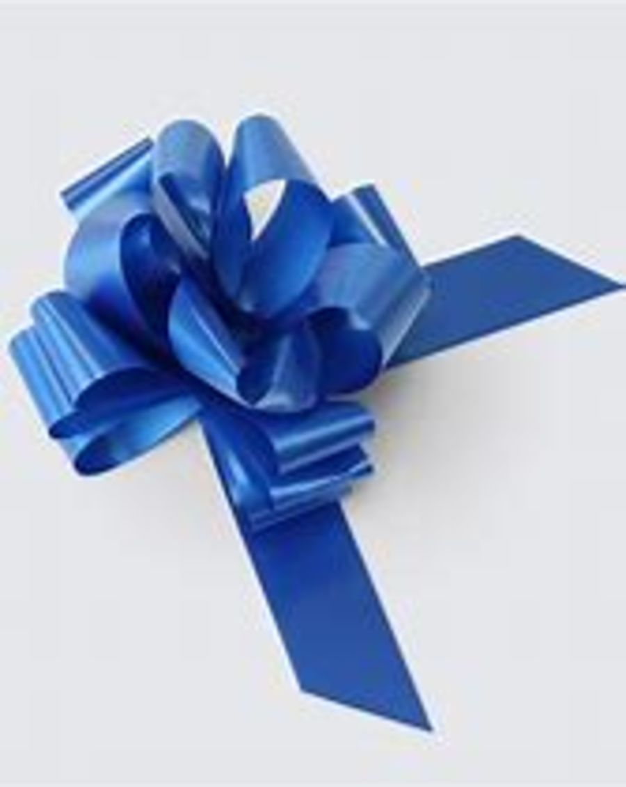 2 Inch Pull Bow - Blue