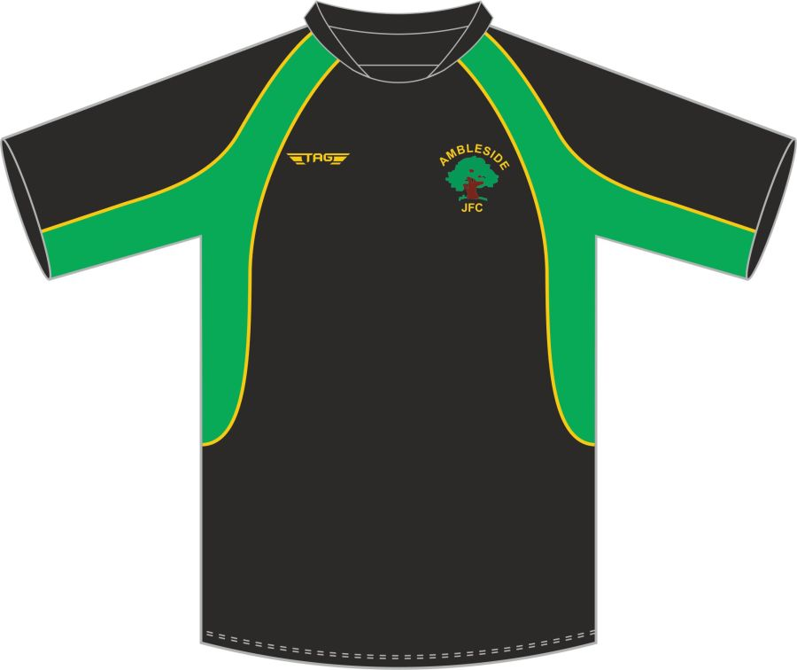 D3C. Ambleside JFC Training Jersey - Child**