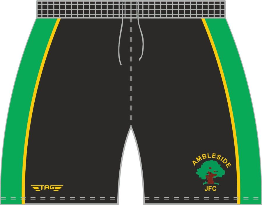 D3L. Ambleside JFC Training Short - Adult**