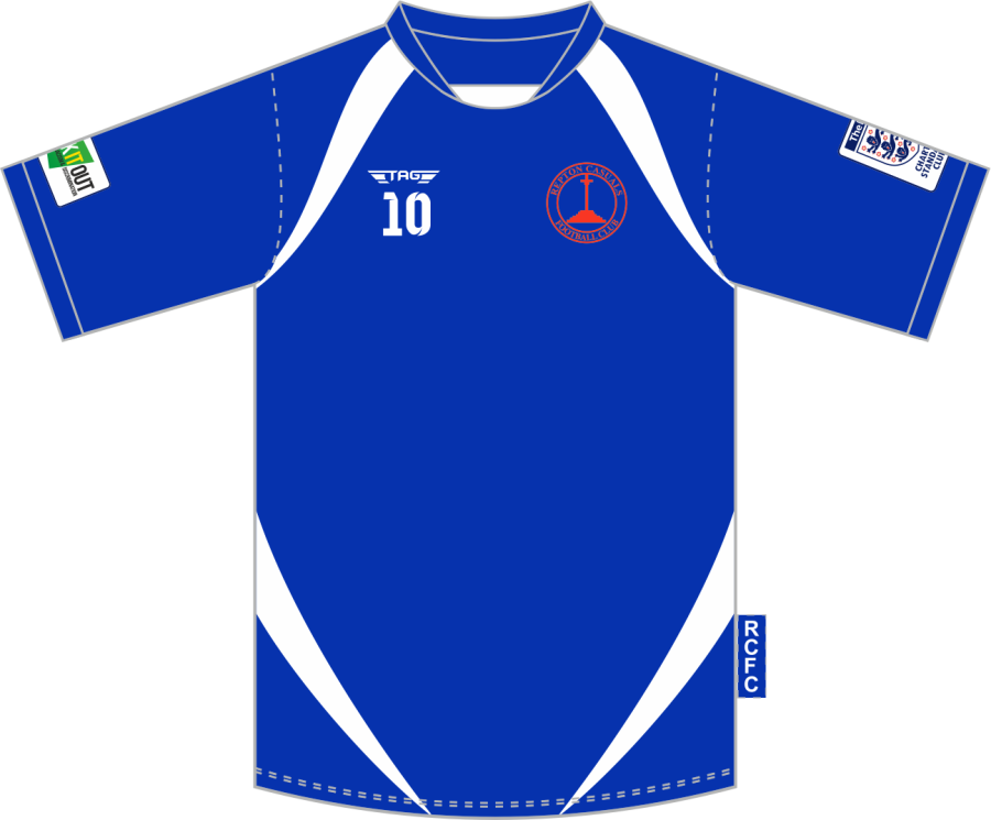 D3H. Repton Casuals Blue Training Jersey - Adult
