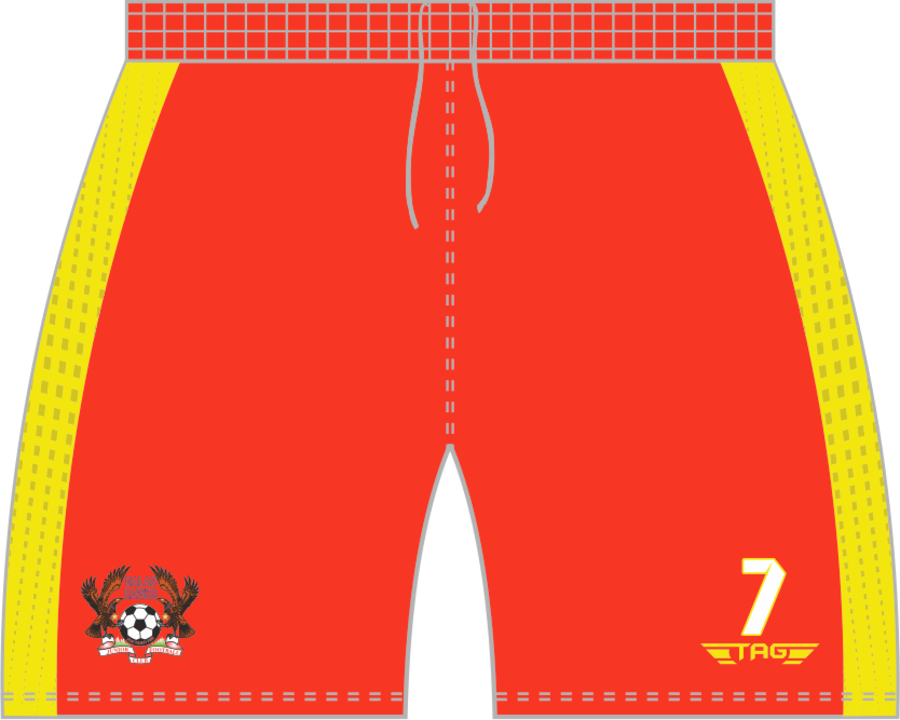 C3G. Halas Hawks Away Match Short - Child