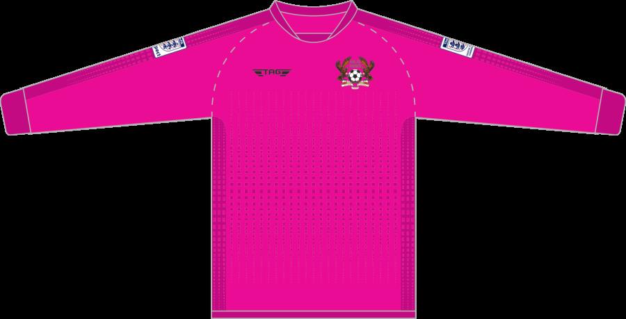 C4E. Halas Hawks Pink GK Jersey - Child