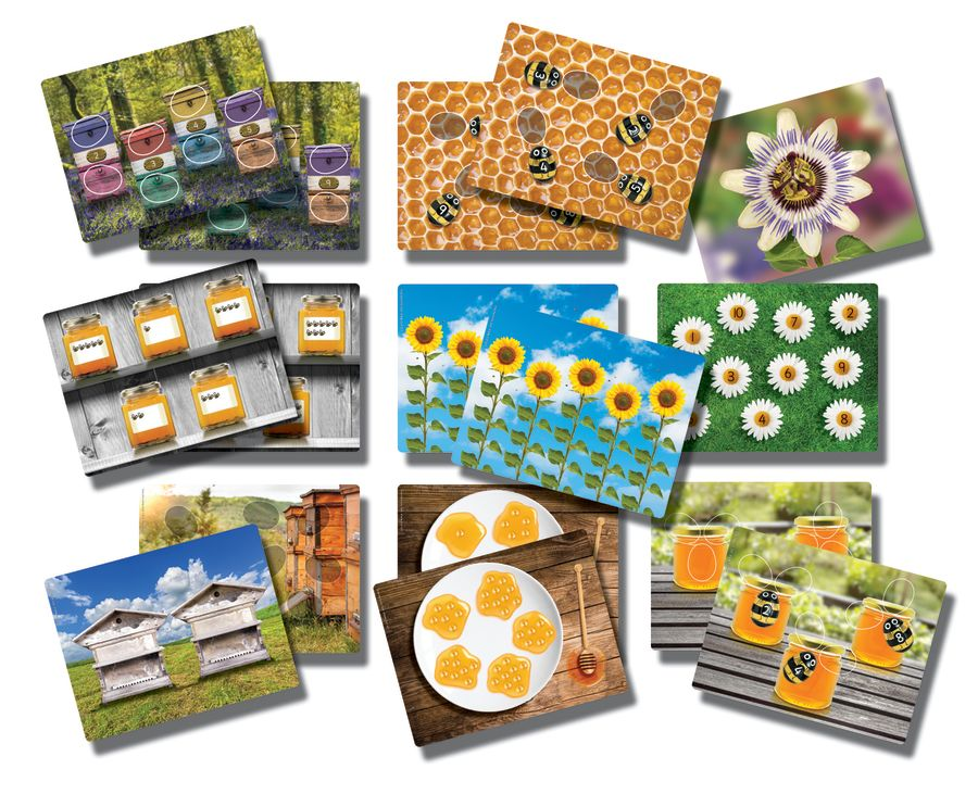 Honey Bee Number Activity Cards