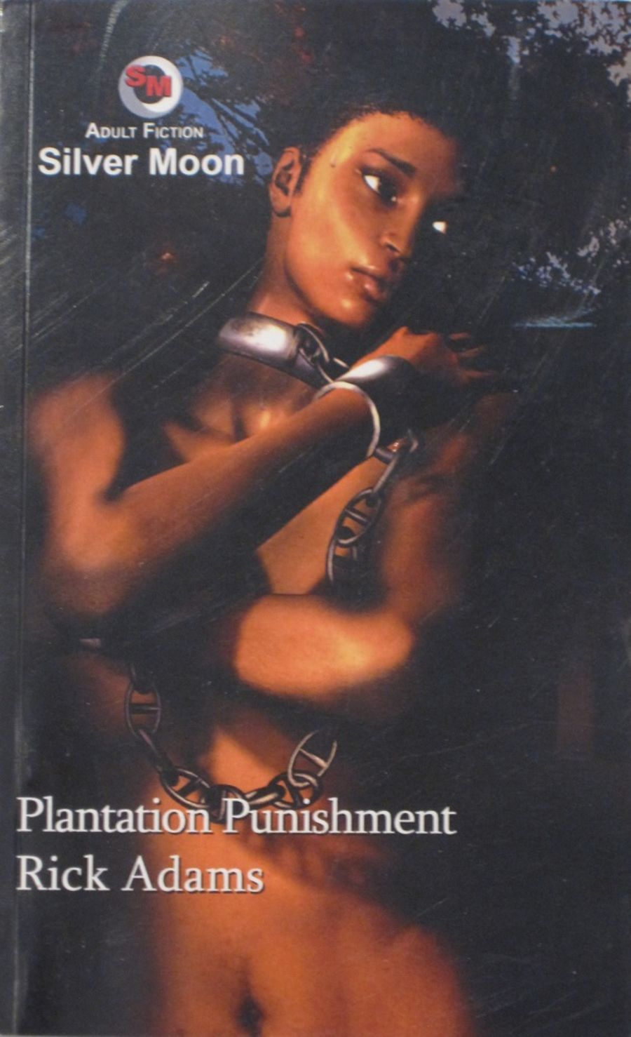 PLANTATION PUNISHMENT.  2006 EROTIC FICTION PAPERBACK BOOK.