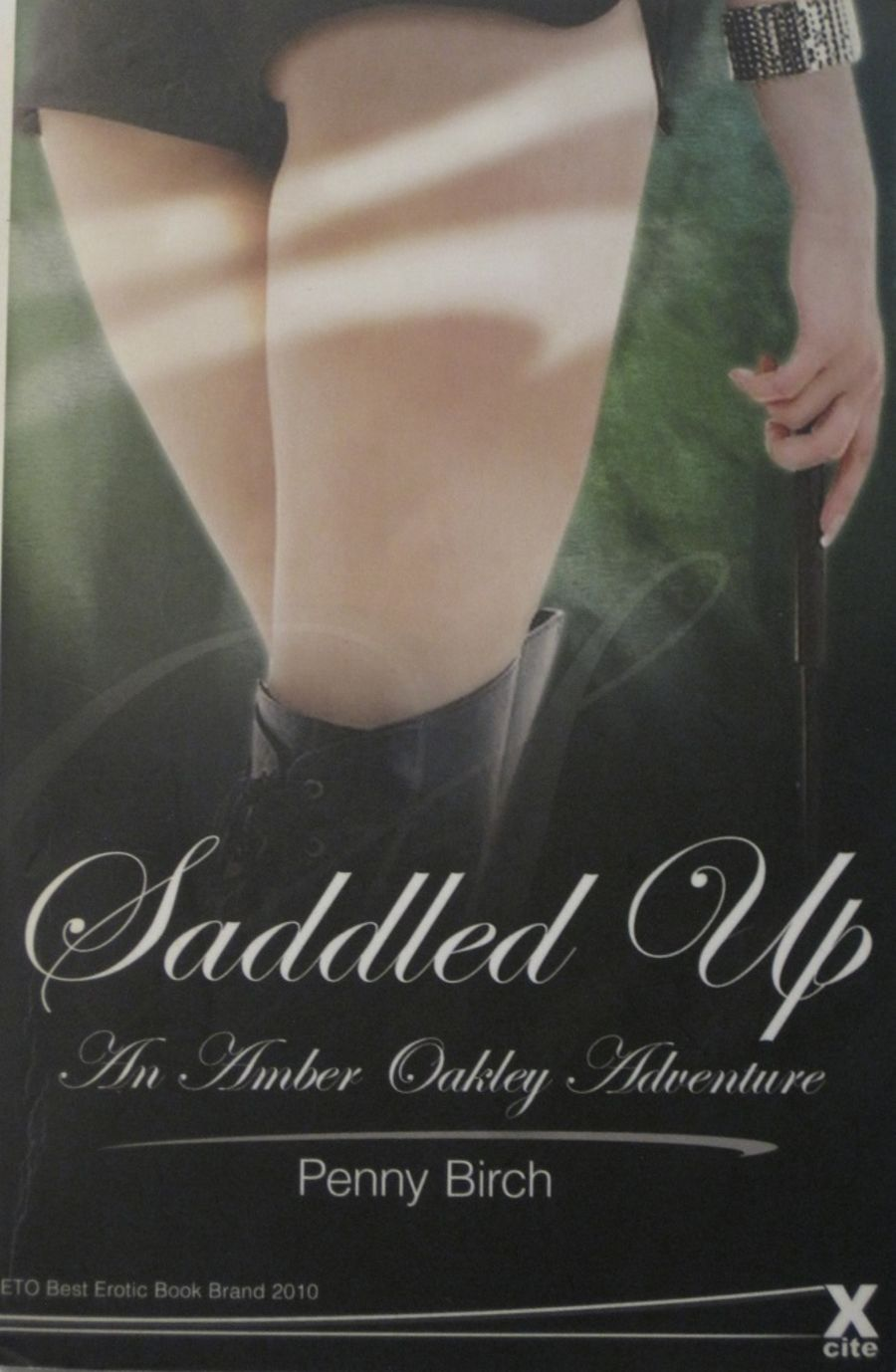 SADDLED UP.  2011 EROTIC FICTION PAPERBACK BOOK.