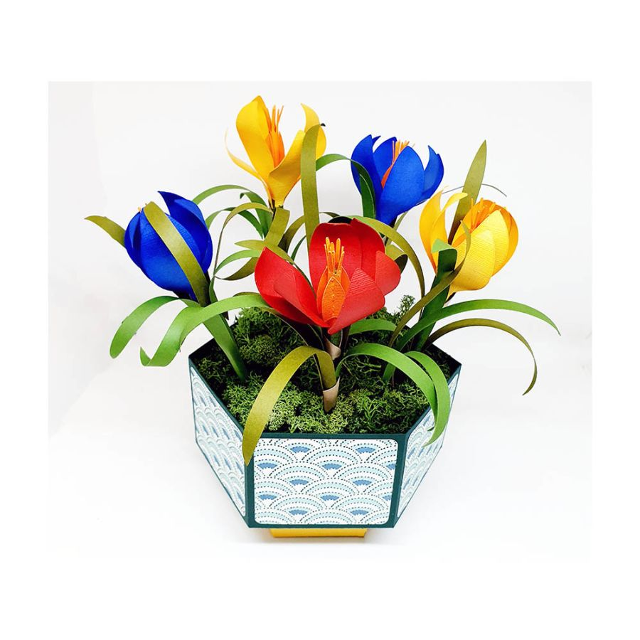 Spring Crocus Bowl - Chantal's Gifts