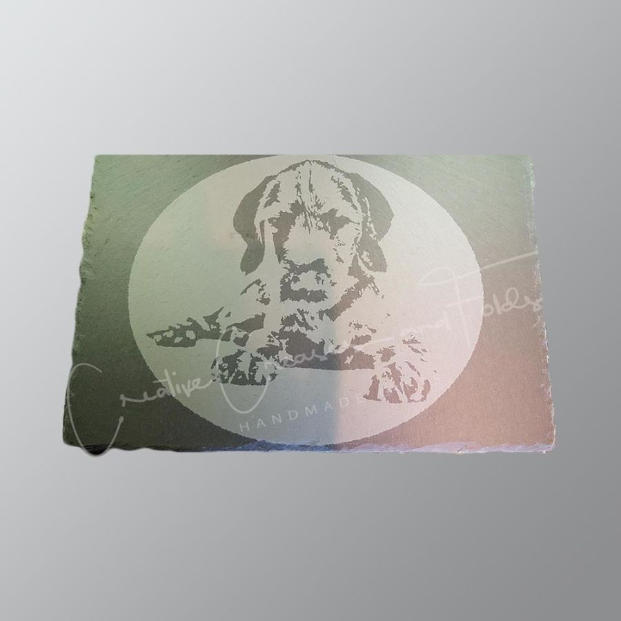 Wirehaired Vizsla - Hand Etched Slate