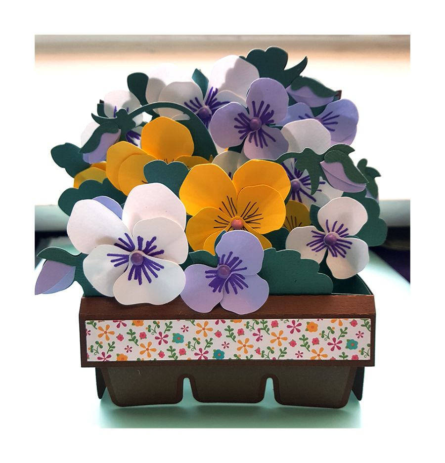 Pansies 3D Box Card