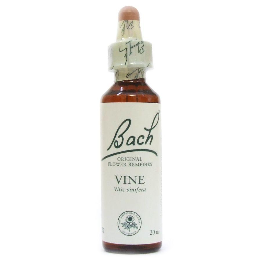 Bach Flower Remedies ~ Vine 20mls