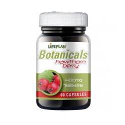 Lifeplan Hawthorn Berry 500mg 60 capsules