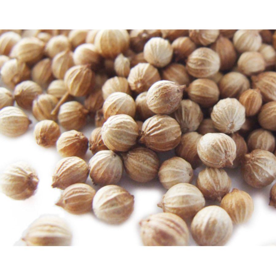 Country Kitchen Coriander Seeds 25g