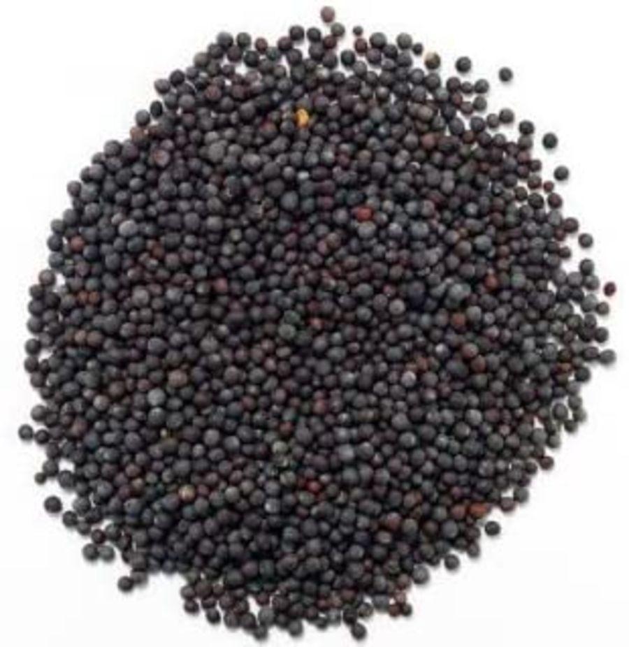 Country Kitchen Mustard Seeds - Black 25g
