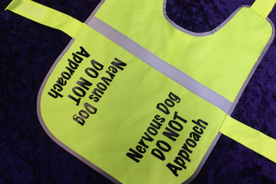 Personalised Doggy Hi Viz Vest
