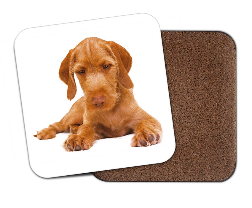 Hungarian Wirehaired Vizsla Puppy Coaster