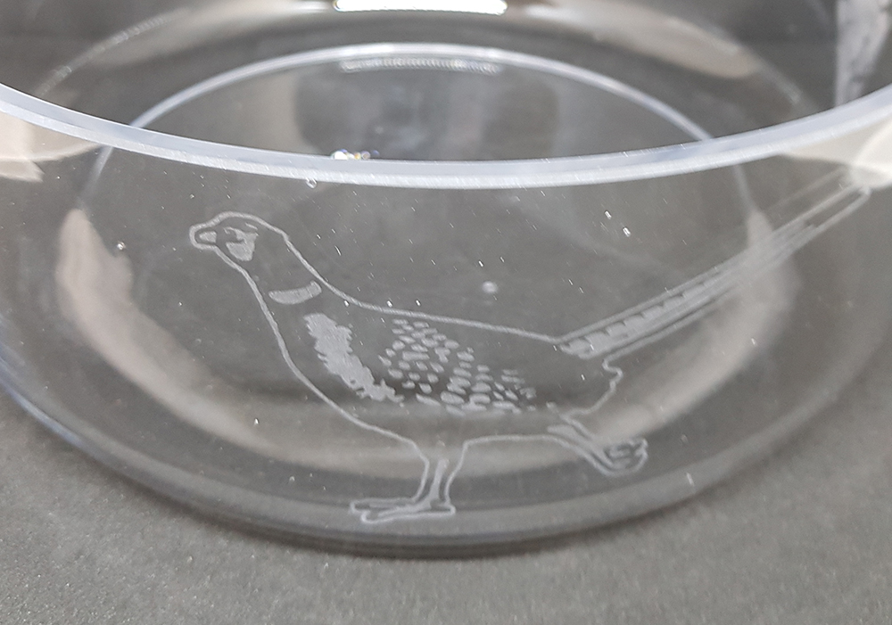 Hand Etched Glass Fruit Bowl