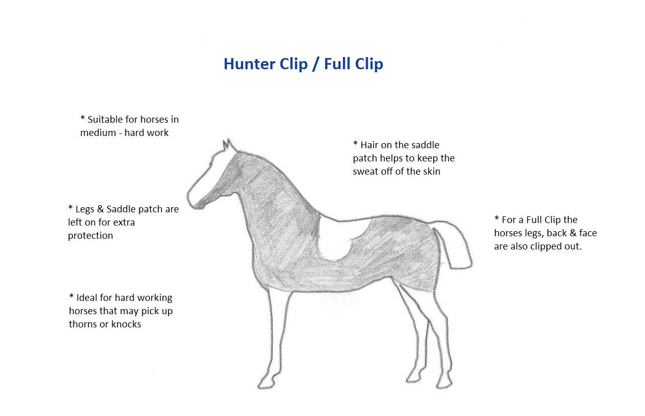 Full / Hunter Clip