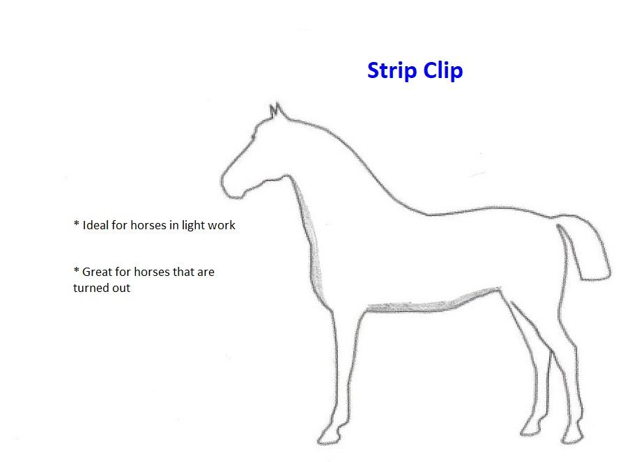 Strip Clip