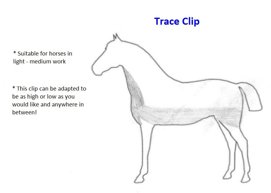 Trace Clip